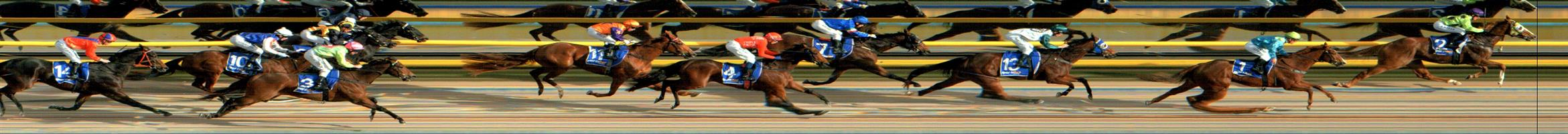 BALLARAT SYNTHET Race 5 No. 7 Trojan Storm @ $6  Result: 4th at SP $6.00. Settled in third, a couple of lenghts from the leader. Had every chance in the straight to chase down the leader but was no match and finished in fourth, four lengths from the winner. Outcome -1.00 Units.