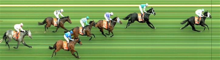 CAULFIELD Race 2 No. 14 Doroza @ $11   Result : Unplaced at SP $13.00. Settled midfield. When making its run was tightened for room though when clean air found, hit the line well. Outcome -0.50 Units.