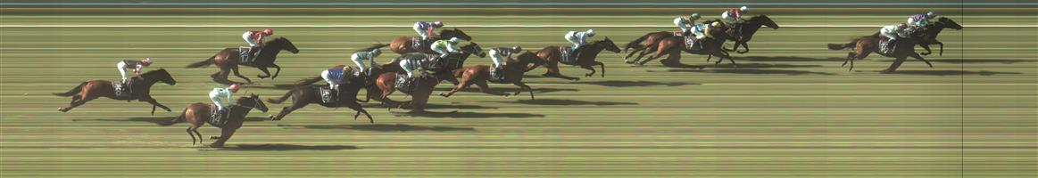 BENDIGO Race 3 No. 10 Surfliner @ $6   Result : 2nd at SP $5.00. Coming from behind the leading pairs was chasing the leader and winner all the up the straight but just couldn't make up the difference. Outcome -1.00 Unit.