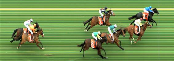 CAULFIELD Race 5 No. 6 Enigman @ $7   Result : Unplaced at SP $6.00. Was forward and ended up three wide no cover. Weakend out to finish towards the tail of the field. Outcome -0.83 Units.