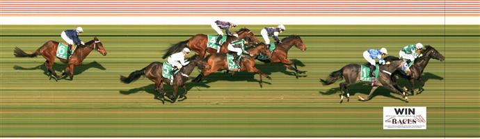 🏆🏆🏆🏆🏆🏆MORPHETTVILLE P Race 6 No. 7 Yulong Patrol @ $6   Result : 1st at SP $4.60, Best Tote $4.70, Betfair $5.46. Coming from just behind the leaders, hit the front with 200m to go and found enough speed to hold on for the win. Outcome +6.00 Units.
