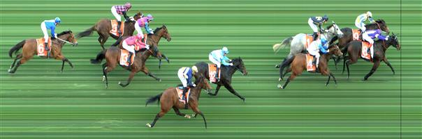 🏆🏆🏆🏆🏆CAULFIELD Race 8 No. 8 Petrelle @ $3.40 (1.5 UNITS WIN)   Result : 1st at SP $2.80, Best Tote $2.90, Betfair $3.10. From midfield was four, five wide on the straight but kept on finding in the straight to score a narrow victory. Outcome +5.10 Units