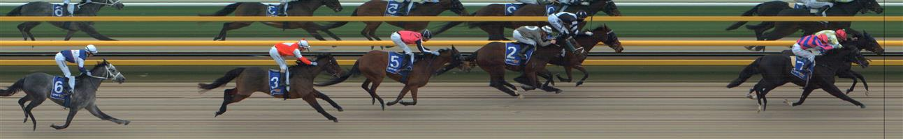 BALLARAT SYNTHET Race 4 No. 3 Man Of Action @ $23   Result : Unplaced at SP $21.00. Settled midfield, under pressure from the turn and finished midfield. Outcome -0.23 Units.