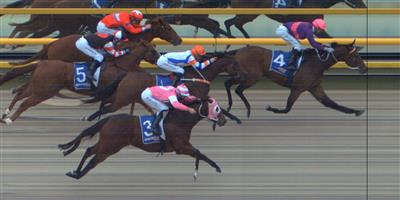 BALLARAT SYNTHET Race 5 No. 2 Double The Magic @ $11   Result : 4th at SP $13.00. In the six horse field, settled towards the back. While made a challenge, weakened late to finish in fourth. Outcome -0.50 Units.