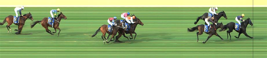 SANDOWN LAKESIDE Race 4 No. 3 Future Score @ $7   Result : 2nd at SP $7.00. Went forward after being three wide no cover to lead. Fought on well in the straight but the winner had the easier run and fresher legs in the straight to claim victory. Outcome -0.84 Units.