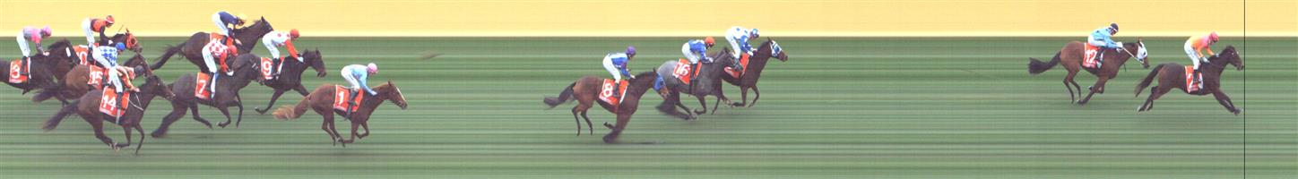 SANDOWN LAKESIDE Race 8 No. 7 Kansas City @ $13   Result : Unplaced at SP $17.00. Settled midfield, got shuffled back a pair on the turn and just battled in the straight to finish in the last part of the field. Outcome -0.42 Units.