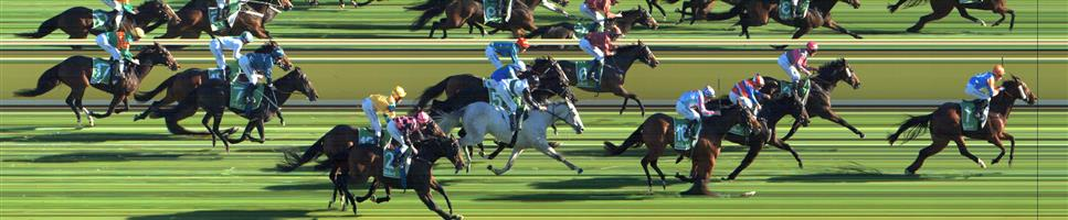 SWAN HILL Race 6 No. 16 Dunmam @ $6.50   Result : 4th at SP $8.50. Settled at the tail and was a mile off the leader but finished very strongly in the last 200m to just miss the placings. Outcome -0.91 Units.