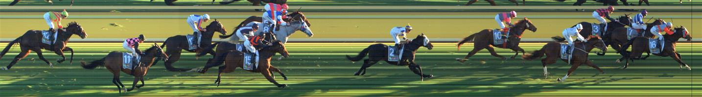 SWAN HILL Race 9 No. 12 Sang Choi Bao @ $61+   Result : Unplaced at SP $71.00. Always out the back, never looked a winning shot. Outcome -0.08 Units.