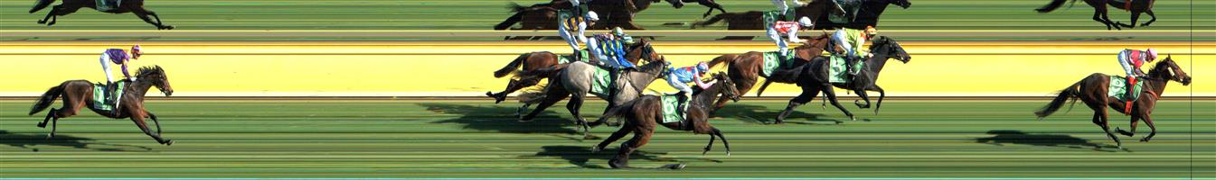 SWAN HILL Race 3 No. 3 Tigre Royale @ $3.80   Result : Unplaced at SP $3.10. When looking to make its move into the race got severly hampered and nearly fell to rule out its chances. Outcome -1.50 Units.  SWAN HILL Race 3 No. 4 Tormino @ $14   Result : Unplaced at SP $21.00. Was involved in interference in the straight and finished out of the placings. Outcome -0.38 Units.   IMAGE NOT AVAILABLE   NEWCASTLE Race 4 No. 10 Travanti @ $19   Result : Unplaced at SP $15.00. Coming from the back, didn't have the finishing speed to challenge the leaders and finished midfield. Outcome -0.28 Units.   IMAGE NOT AVAILABLE   EAGLE FARM Race 5 No. 11 Junipal @ $17   Result : Unplaced at SP $26.00. Coming from the back and following the rails, was held up early in the straight and had a bit of zig zagging run to finish just outside the placings. Hit the line well. Outcome -0.31 Units.