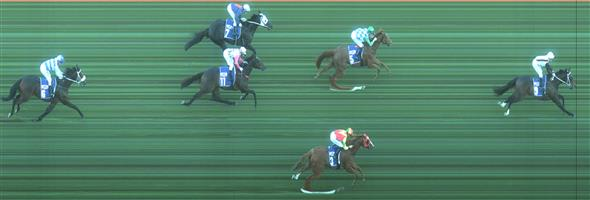 FLEMINGTON Race 6 No. 5 Last Week @ $3.30   Result : 2nd at SP $2.50. Settled in third though was stuck in a pocket for some of the straight though got clear at about the 150m mark but damage had been done which Last Week couldn't undo. Outcome -1.50 Units.   IMAGE NOT AVAILABLE   EAGLE FARM Race 7 No. 4 Declares War @ $17   Result : Unplaced at SP $21.00. After settling fourth, pressure was applied on the turn and dropped back through the field to finish about midfield. Outcome -0.31 Units.  EAGLE FARM Race 7 No. 7 Not A Single Cent @ $61+   Result : Unplaced at SP $101.00. Coming from the back, held its own in the straight to finish in sixth without ever really threatening for the win. Definitely not the run of a $101 shot. Outcome -0.08 Units.