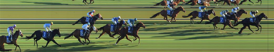 SWAN HILL Race 8 No. 13 Open The Hatch @ $9   Result : Unplaced at SP $9.00. After settling midfield, eased out of the race half way up the straight and finished a long last. Outcome -0.63 Units.
