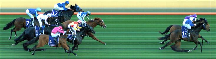 FLEMINGTON Race 9 No. 7 Saccharo @ $26+   Result : Unplaced at SP $21.00. Settled in third and was there in the straight but dropped out to finish midfield. Outcome -0.20 Units