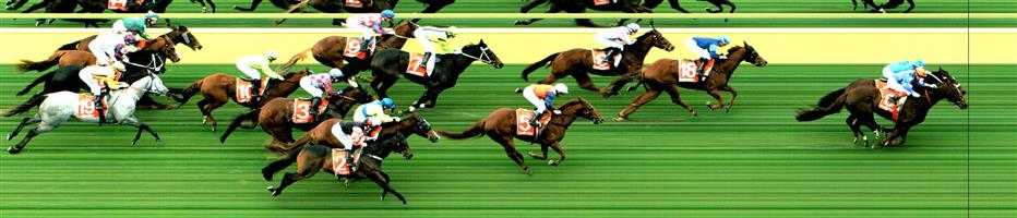 MORNINGTON Race 7 No. 8 Fast Fever @ $5.50   Result : 4th at SP $4.20. Settled in second, battled for the majority of the straight but did tire in the last 50 to 100 meters to finish in fourth. Brave effort. Outcome -1.11 Units.