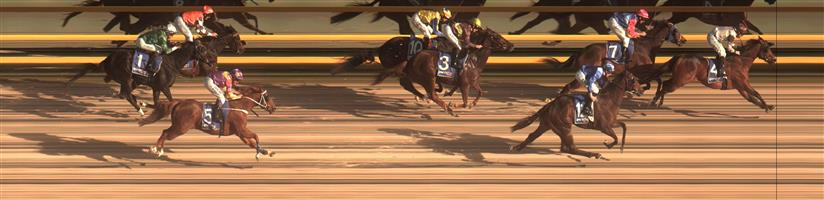 🏆🏆🏆🏆🏆 BALLARAT SYNTHET Race 4 No. 4 Comte @ $3.50   Result : 1st at SP $2.40, Best Tote $2.40, Betfair $2.96. Settled at the tail of the field and was the widest runner on the turn and really extended nicely in the straight to score a last to first victory. Outcome +5.25 Units.