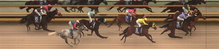 BALLARAT SYNTHET Race 7 No. 6 Redeemer @ $9.50   Result : Unplaced at SP $10.00. Settled in fourth, a length or so behind the leader. On the turn as it looked to make its run and get off the rails, was checked and lost momentum and from there its chances were lost and finished in the last part of the field. Outcome -0.59 Units.