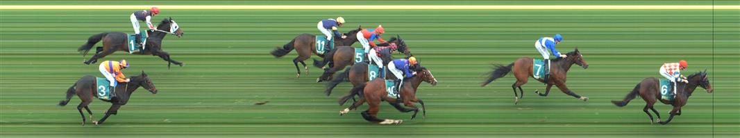 GEELONG Race 2 No. 10 Regal Effort @ $6#10   Result : 3rd at SP $6.00. After being midfield, three wide the trip, went towards the outside rail in the straight and while hit the line nicely was never a real chance, as leader raced away in the straight which Regal Effort couldn't match. Outcome -1.00 Unit.