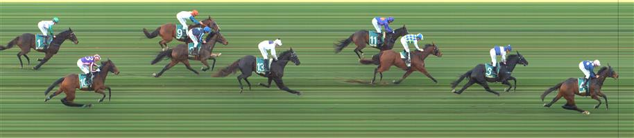 GEELONG Race 5 No. 5 Navarro Lad @ $5.50   Result : Unplaced at SP $8.00. Always out the back and was struggling from the turn in the heavy conditions and finished at the tail of the field. Outcome -1.11 Units.  GEELONG Race 5 No. 7 Arohata @ $4.80   Result : 3rd at SP $4.80. After settling just off the speed, kept towards the unfavoured part of the track on the inside rail and finished well for third but never really looked like winning. Outcome -1.32 Units.