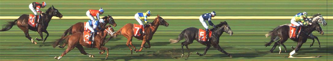 SANDOWN LAKESIDE Race 5 No. 7 Thunder Cloud   Result : 4th at SP $5.50. Settled in fifth on the inside and straightend up in the clear and just battled to the line without ever threatening for victory. Outcome -1.11 Units.