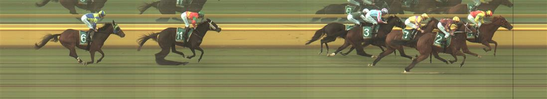 ECHUCA Race 4 No. 3 Emperor Hanwu   Result : 4th at SP $6.00. Settled midfield and in the straight encountered some traffic and lack of room though still ran well to the line for fourth. Outcome -1.00 Unit.  ECHUCA Race 4 No. 7 Whitton Lane   Result : 3rd at SP $5.50. Settled in fourth a couple of pairs pack from the leader. Straightened up in the clear and ran respectably to the line to claim third. Outcome -1.11 Units.