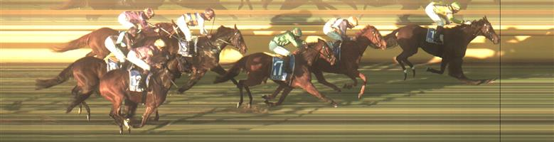 ECHUCA Race 9 No. 16 Sizzlesun   Result : 2nd at SP $5.00. Settled just behind the leaders and at the top of the straight had a couple of bumps to get a clear run home and did well in the final 100m but the bumps at the top of the straight probably cost its chances of victory. Outcome -1.25 Units.