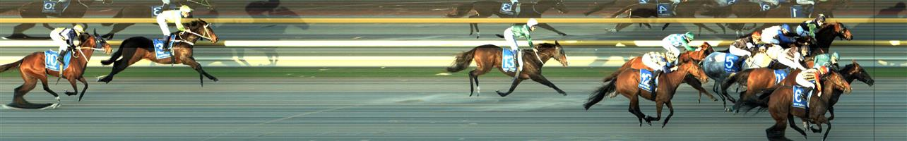 RACING.COM SYNTH Race 8 No. 9 Tigeen @ $14   Result : Unplaced at SP $6.50. Coming from towards the tail of the field, got a nice split entering the straight and looked to have a good claim on the race but was swamped in the final stages to finish midfield. Outcome -0.38 Units.