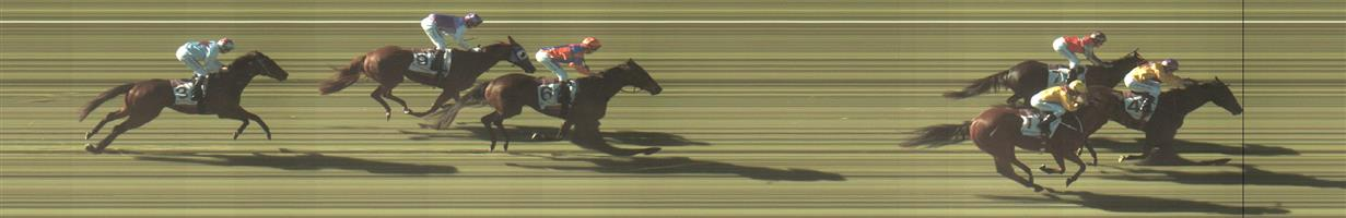 BENDIGO Race 2 No. 6 Zancada   Result : 4th at SP $12.00. Coming from the back, ran on okay down the middle the track without ever threatening for the win. Outcome -0.45 Units.