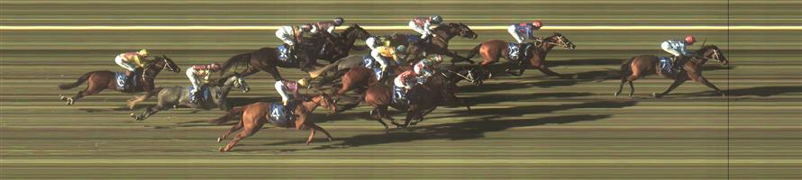 BENDIGO Race 7 No. 9 Converging   Result : Unplaced at SP $7.00. Coming from midfield, had a clean run in the straight but never came on and finished midfield. Outcome -0.83 Units.