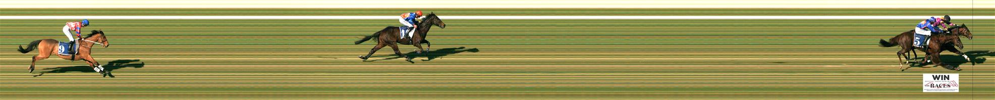 MORPHETTVILLE Race 2 No. 2 Euroman   Result : Unplaced at SP $2.15. Had a tumble mid race after a jump where the jockey showed great horseman ship to stay on however horse was eased out very soon after that. Outcome -1.50 Units.  MORPHETTVILLE Race 2 No. 5 Andrea Mantegna   Result : 2nd at SP $5.00. Settled midfield though made its move forward with about 800m to go. At the turn was behind the leader and took the lead soon after, but leader kicked back and in a close battle all the way up the straight, Andrea Mantegna finished on the wrong side of the ledger. Outcome -1.25 Units.