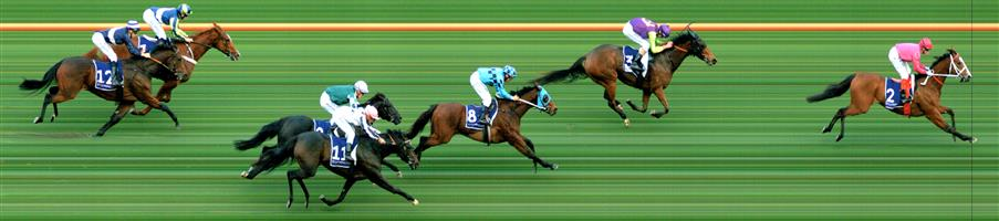 FLEMINGTON Race 8 No. 9 Yulong Patrol   Result : Unplaced at SP $10.00. Settled midfield, had a clean run from the top of the straight and while ran okay, was never a winning sight. Outcome -0.56 Units.