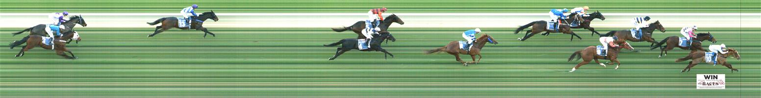 MORPHETTVILLE Race 7 No. 6 Chelkar   Result : 3rd at SP $6.00. Settled midfield though lost position slightly mid race when new leader occurred. Hard ridden from the top of the straight with many lengths to make up and finished well for third. Outcome -1.00 Unit.