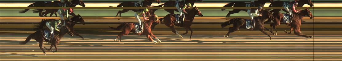 BALLARAT SYNTHET Race 8 No. 10 Casa Larada   Result : 2nd at SP $8.00. Coming from a midfield position, finished hard but couldn't run down winner who lead from start to finish. Outcome -0.71 Units.