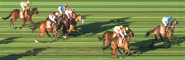 SANDOWN HILLSIDE Race 6 No. 8 Lagerfeld   Result : Unplaced at SP $3.60. Settled midfield but in the straight never ran on and finished towards the tail of the field. Outcome -1.50 Units.  SANDOWN HILLSIDE Race 6 No. 11 Sang Choi Bao   Result : Unplaced at SP $41.00. Settled towards the tail of the field, stayed towards the inside in the straight though never made any real progress. Outcome -0.13 Units.