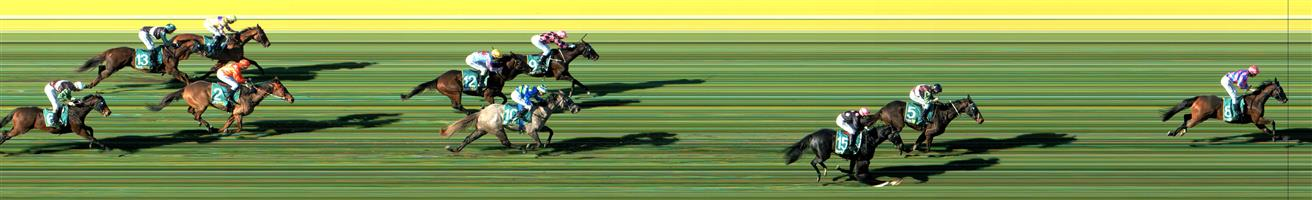GEELONG Race 2 No. 4 Emperor Hanwu   Result : Unplaced at SP $10.00. Always towards the rear of the field and never challenged in the finish. Outcome -0.56 Units.  GEELONG Race 2 No. 10 Tormino   Result : Unplaced at SP $5.00. Coming from midfield presented on the turn but was well beaten by the winner while Tormino finished in around fifth. Outcome -1.25 Units.  GEELONG Race 2 No. 11 Whitton Lane   Result : Unplaced at SP $6.50. Settled a little better than midfield and kept to the rails and finished midfield never really challenging in the straight. Outcome -0.91 Units.