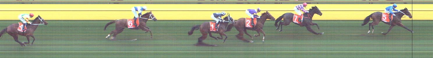 CAULFIELD Race 7 No. 7 One More Try   Result : 2nd at SP $2.30. Settled in second outside the leader and eventual winner. The winner kicked on the turn and from then on One More Try was no match for the winner but held second comfortably. Outcome -1.50 Units.   NO IMAGE AVAILABLE   CALOUNDRA Race 6 No. 2 Junipal   Result : 2nd at SP $3.60. Settled in fifth but on the turn was caught in traffic and while the winner kicked clear, Junipal was just getting clear and finished well to get second. Maybe with a bit more luck, the result could have been different. Outcome -1.50 Units.   NO IMAGE AVAILABLE   CALOUNDRA Race 7 No. 6 Sopressa   Result : 2nd at SP $11.00. Lead for 2300m of the 2400m race though found one better and just could not hold off all the challengers despite a very good run. Outcome -0.50 Units.