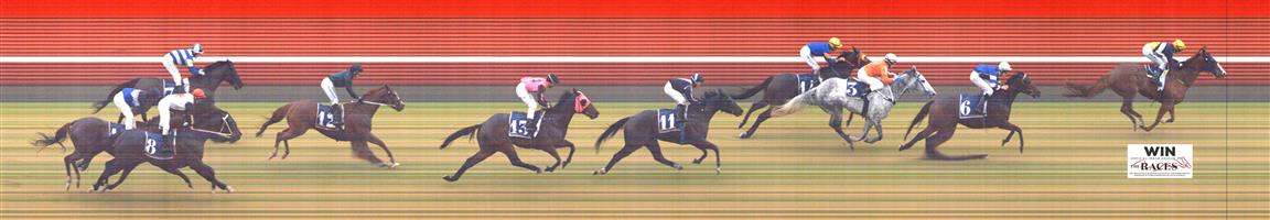 🏆🏆🏆🏆🏆🏆MORPHETTVILLE P Race 8 No. 9 King Kabuto   Result : 1st at SP $3.70, Best Tote $4.00, Betfair $3.80. Having a share of the lead holding the rails, got a margin at the 300m and ran away to win by about a length on the line. Outcome +5.55 Units.
