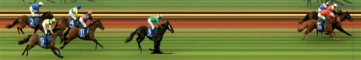 🏆🏆🏆🏆🏆🏆TATURA Race 1 No. 13 Man Of Action   Result : 1st at SP $5.00, Best Tote $8.00, Betfair $5.59. Was in the leading two for the whole race and on the turn took the lead by about a length and managed to hold off the challengers by about a head to salute. Outcome +6.25 Units.
