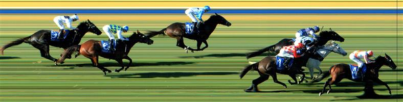 BENDIGO Race 5 No. 5 Navarro Lad   Result : Unplaced at SP $12.00. Always out the back and faded late to finish out the back. Outcome –0.45 Units.  BENDIGO Race 5 No. 6 Arohata   Result : Unlaced at SP $4.40. Settled midfield and plugged home without ever really threatening the winners. Outcome –1.47 Units.