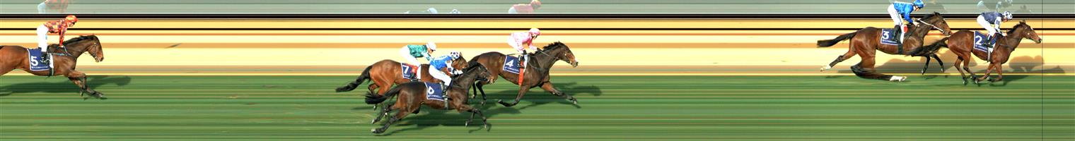 FLEMINGTON Race 2 No. 7 The Statesman   Result : Unplaced at SP $4.40. Was three wide no cover during the run and struggled to finish the race off finishing at the tail of the six horse field. Outcome –1.47 Units.