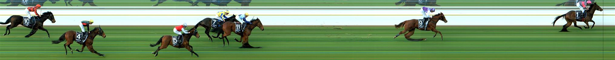 MURTOA Race 2 No. 7 Stinging Remark   Result : 4th at SP $3.30. Settled towards the front of the field but was basically three wide the trip. Unfortunately unable to go with the eventual winner and held its position to finish fourth. Outcome -1.50 Units.