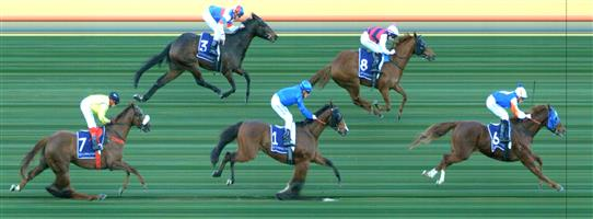 FLEMINGTON Race 6 No. 9 Killavally  Result : Unplaced at SP $2.80. Settled midfield and was under pressure a long way out and struggled and finished in the last part of the field. Outcome -1.50 Units.   NO IMAGE AVAILABLE   MORPHETTVILLE P Race 5 No. 5 Tristano  Result : Unplaced at SP $2.90. Lead the small field but was beaten off with 200m to go and finished at the tail of the field. Outcome -1.50 Units.   NO IMAGE AVAILABLE    🏆🏆🏆🏆 EAGLE FARM Race 7 No. 5 Azuro  Result : 1st at SP $2.70, Best Tote $2.50, Betfair $2.93. Settled midfield one off the rails in the distance race of the day. With the slow pace, made a mid race to go up to the lead fairly easily. From then on controlled the race and was never really challenged for the win. Outcome +4.05 Units.