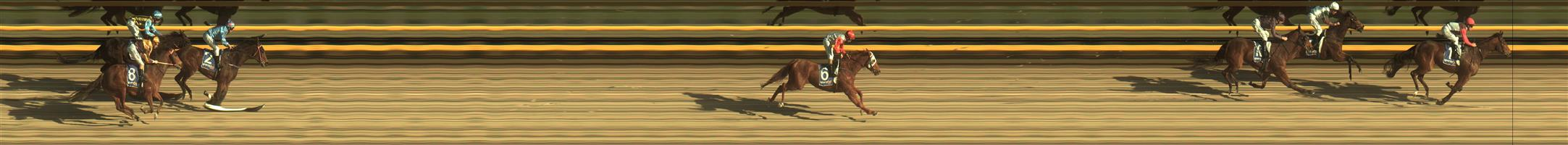 BALLARAT SYNTHET Race 4 No. 9 Yitai Loyalty  Result : 2nd at SP $3.50. After leading for majority of the race was overtaken with about 200m to go and couldn't fight back to finish in second by about a length. Outcome -1.50 Units.