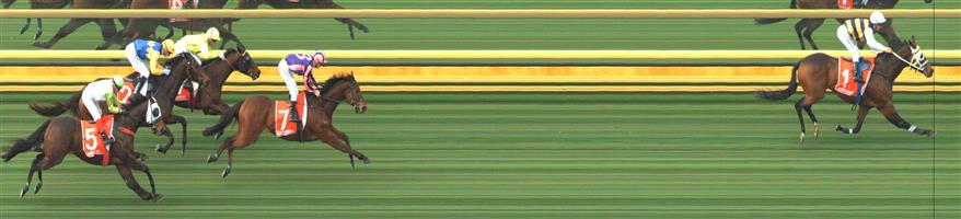 SANDOWN HILLSIDE Race 3 No. 4 Connery  Result : 3rd at SP $2.25. Settled midfield and in its run home saved ground by staying towards the rails but was no match for the winner and all the way lead who won by a number of lengths. Outcome -1.50 Units.