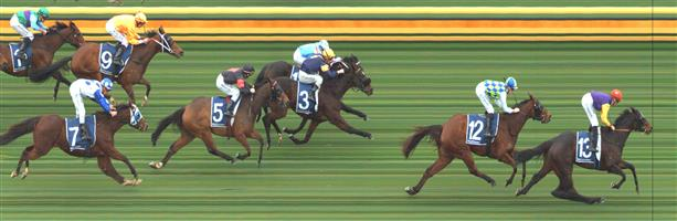 SANDOWN HILLSIDE Race 4 No. 12 Arohata  Result : 2nd at SP $11.00. Settled towards the lead and on the home turn was up near the lead though was three wide. Took the lead for a short period at about the 300m mark though was quickly overtaken by the eventual winner which Arohata couldn't keep with. Outcome -0.50 Units.