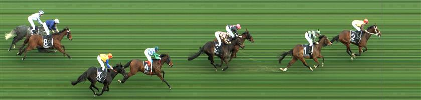 CAULFIELD Race 5 No. 5 Wealthy Wolf  Result : 3rd at SP $9.00. Settled midfield after an early bumping jewel. Had a sound effort in the straight to claim third on the line a number of lengths from the winner. Outcome -0.63 Units.