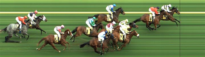 CAULFIELD Race 6 No. 4 Taksu  Result : 2nd at SP $5.00. Lead and kept on kicking on the turn without ever getting a winning margin being grabbed in the shadow of the post to finish a close second. Outcome -1.25 Units.