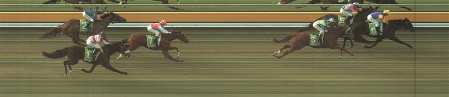MILDURA Race 6 No. 7 Lope De Field  Result : 4th at SP $10.00. Coming from the back stuck to the inside and while finished hard was still a number of lengths from the winners. Too far back. Outcome -0.56 Units.