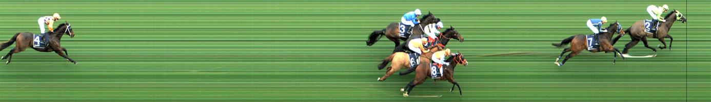 CAULFIELD Race 9 No. 6 Sylpheed  Result : Unplaced at SP $18.00. Settled midfield and hard ridden from the turn and kept going in the straight to finish midfield. Outcome -0.29 Units.