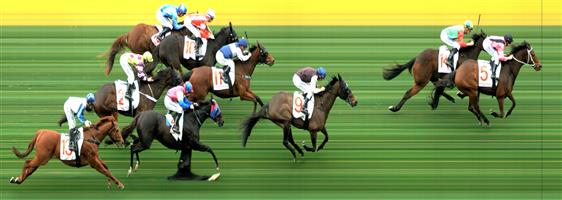 MOONEE VALLEY Race 5 No. 9 Mercy Street  Result : 3rd at $17.00. Settled in the last part of the field. On the turn, went up the widest and kept on finding in the run to the line to finish third though a length or two off the winners. Outcome -0.31 Units.