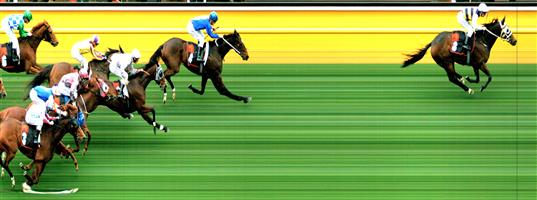 MOONEE VALLEY Race 7 No. 6 Last Week  Result : Unplaced at SP $11.00. Settled midfield and was wide on the turn but only held its ground in the straight to finish in the last quarter of the field. Never a real winning hope. Outcome -0.50 Units.