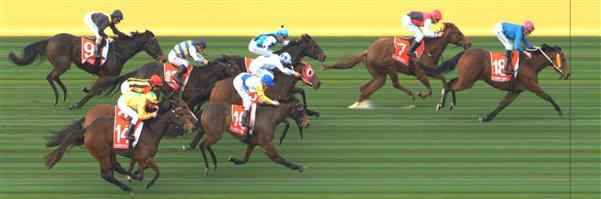 SANDOWN LAKESIDE Race 4 No. 17 Cataracta  Result : 3rd at SP $4.00. Lead though always had company. Challenged a number of times up the straight and held on until the final 200m when finally weakened but claimed third in a photo. Outcome -1.50 Units.